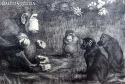 Humoros litográfia a 19.század végéről,majmok