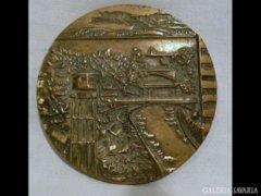 Y378 I2 Nagyméretű Siófokért bronzplakett