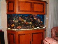 Akvárium intarziás szekrényben