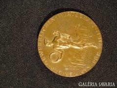 T069 Régi osztrák bronz plakett
