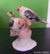 Aquincumi porcelán madárpár