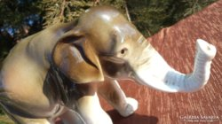 Royal dux elefánt