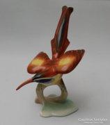 Aquincumi madár