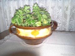 Kovács Éva keramikus - antik kerámia kaspója
