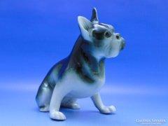 0A605 Royal Dux porcelán bulldog kutya figura
