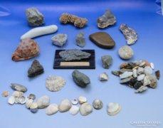 0B523 Régi kőzet kagyló gyűjtemény