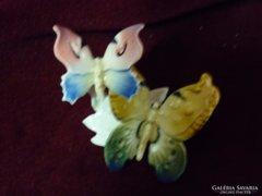 Ens pillangók