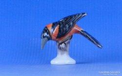 0D159 Herendi porcelán kismadár