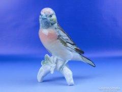 0D781 Antik ENS porcelán madár