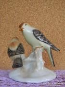 Aquincumi madár pár.