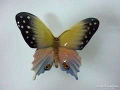 Volkstedt nagy pillangó