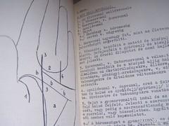 Kiromantia (Kézvonalak jelentése)