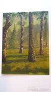 Sárdy, Erdei tájkép fákkal ,olajfestmény kartonra