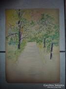 Sétány zöldellő fákkal, régi akvarell. Leányfalu 1986