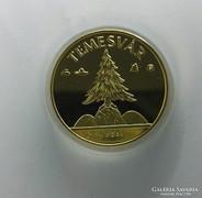 Erdély - Temesvár aranyozott emlékérem PP