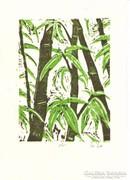 - Bambuszok - színes linometszet