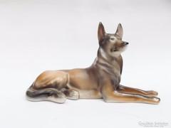 Drasche németjuhász kutya