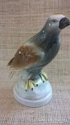 Régi jelzett sorszámozott  foreign porcelán madár