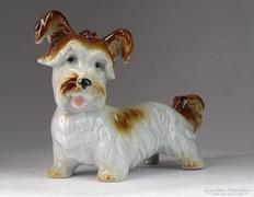 0M671 Régi porcelán kutya kutyus 15 cm
