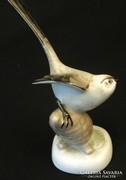 Aquincumi porcelán madár - őszapó(?)