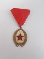 Szocreál kitüntetés szocialista jelvény (AA-10)