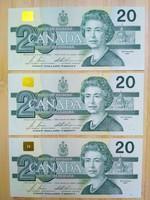 Sorkövető Kanadai 20 dollár.