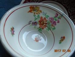 KARLSBAD CARL KNOLL monogrammal,kézzel festett látványos virágokkal,teás csésze alátéttel