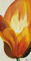 TULIPÁN-FÉNY - csodálatos eredeti olajfestmény a művésztől!