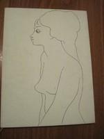 A női szépség fotóban és rajzban