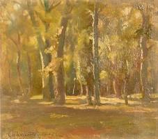 Magyar festő, XX. század első fele : Fák