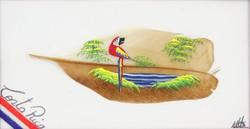0O285 Jelzett Costa Ricai madártoll festmény