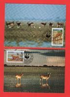 Carte Maximum - WWF Zambia - 1987 (383)