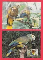Carte Maximum - WWF St. Vincent - 1989 (289)