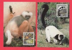 Carte Maximum - WWF Madagaszkár - 1988 (286)