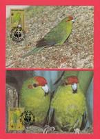 Carte Maximum - WWF Norfolk-szigetek - 1987 (284)