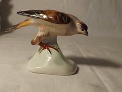 Aquincumi madár porcelán