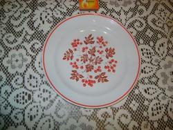 Zsolnay dísztányér, lapos tányér - csipkebogyós