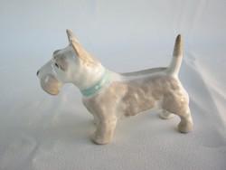 Aquincumi porcelán kutya
