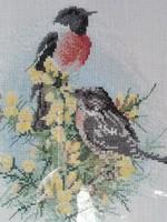 Keresztszemes madár, hímzés képkeretben