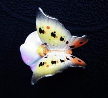 Drasche pillangó virágon