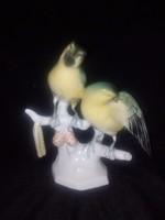 Volkstedt madarak (sérült)