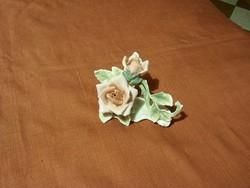 ENS rózsa,  hibátlan