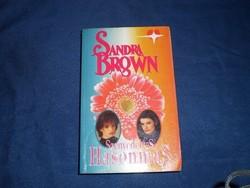 Sandra Brown: Szenvedélyes hasonmás