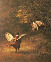 """LEÁRAZTAM! Török Géza """"Fácánok"""" című szépen kidolgozott vadászfestménye eladó (akár kerettel is)"""