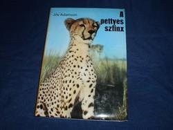 Joy Adamson: A pettyes szfinx