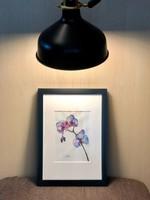 Modern orchidea akvarell D. Szabó