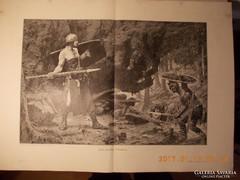 Fametszet 1880-as évek 13