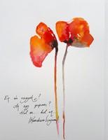 Poppy-haiku