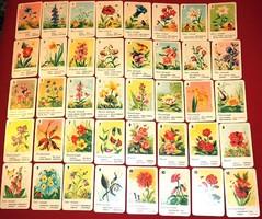 Virágkvartett, hiánytalan kártya, 1968
