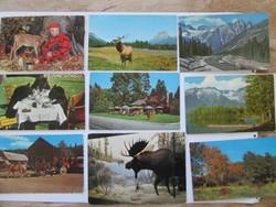 Vadász erdész képeslapok Canadából